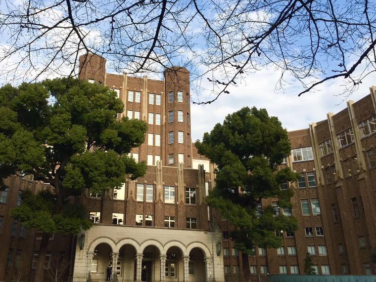桜と建物B.jpg